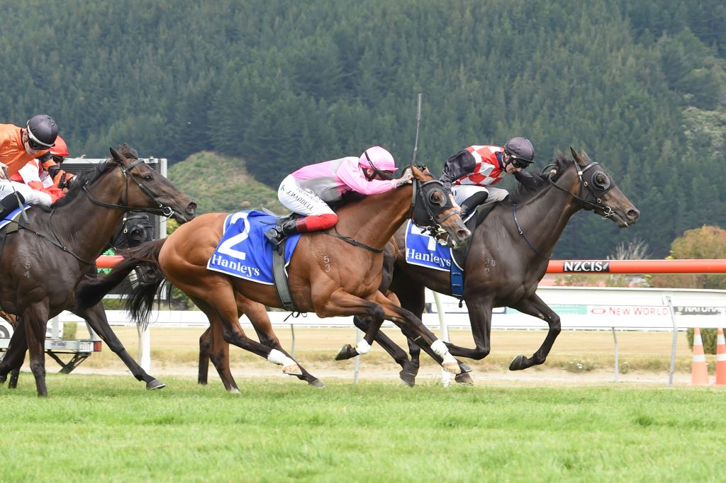 The Mitigator leads all the way in the Gr.1 Harcourts Thorndon Mile (1600m) Photo credit: Race Images – Grant Matthew